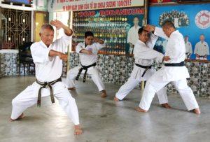 Võ sư Ngô Văn Thành-người dẫn đầu trong bộ môn Karate Việt Nam